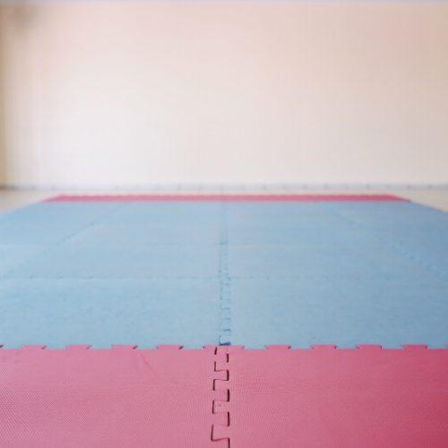 area-de-judo(1)